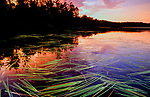 Post sunset on English Lake in the Chequamegon National Forest.