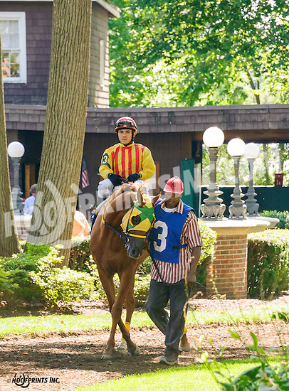 Prince of Kentucky before The Strike Your Colors Stakes at Delaware Park on 8/4/16