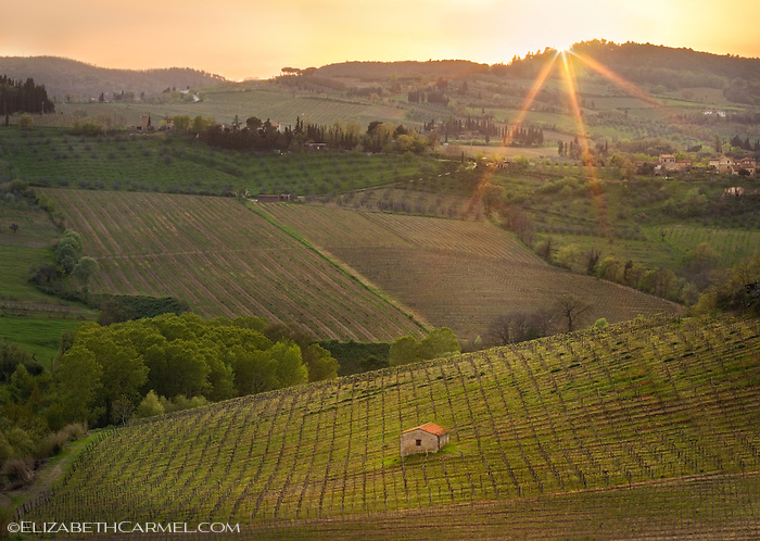 Tuscan Sunset I