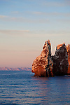 Los Islotes in the Sea of Cortez, Baja, Mexico hosts one of 13 California Sea Lion colonies.