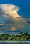Thunderstorms, rainbows, and heavy showers are a regular feature of the Amazon region, Rio Maranon, Peru