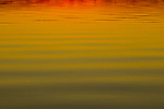 Water pattern at sunset, Ibera Provincial Reserve, Ibera Wetlands, Argentina