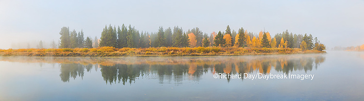 67545-08905 Fall color and fog along the Snake River at Oxbow Bend, Grand Teton National Park, WY