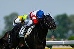 FUCHU,JAPAN-MAY 26: Danon Kingly fought well against Roger Barows bt neck in the Tokyo Yushun (Japanese Derby) at Tokyo Racecourse on May 26,2019 in Fuchu,Tokyo,Japan. Kaz Ishida/Eclipse Sportswire/CSM