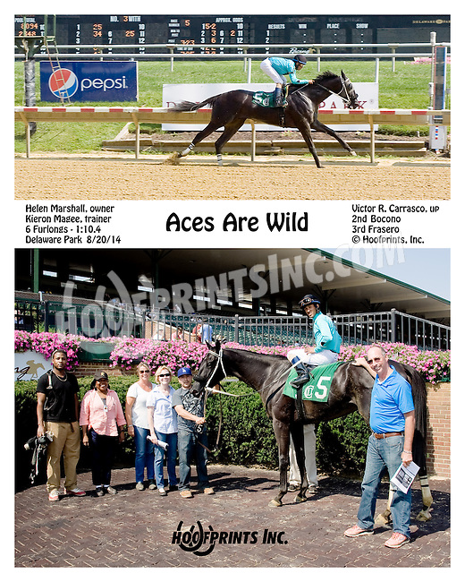 Aces Are Wild winning at Delaware Park on 8/20/14