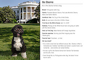 """Washington, DC - June 19, 2009 -- Combined front and back view of the """"Bo"""" baseball card.  This is the official portrait of the Obama family dog """"Bo"""", a Portuguese water dog, on the South Lawn of the White House. .Mandatory Credit: Chuck Kennedy - White House via CNP"""