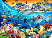 Howard, REALISTIC ANIMALS, REALISTISCHE TIERE, ANIMALES REALISTICOS, paintings,+dolphins,corral reef,tropical fishes,++++,GBHR877,#A# ,puzzles