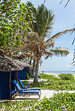 ZANZIBAR, Bwejuu Beach, Blue Beach Huts and Chairs at the Palms Resort, looking at the Ocean