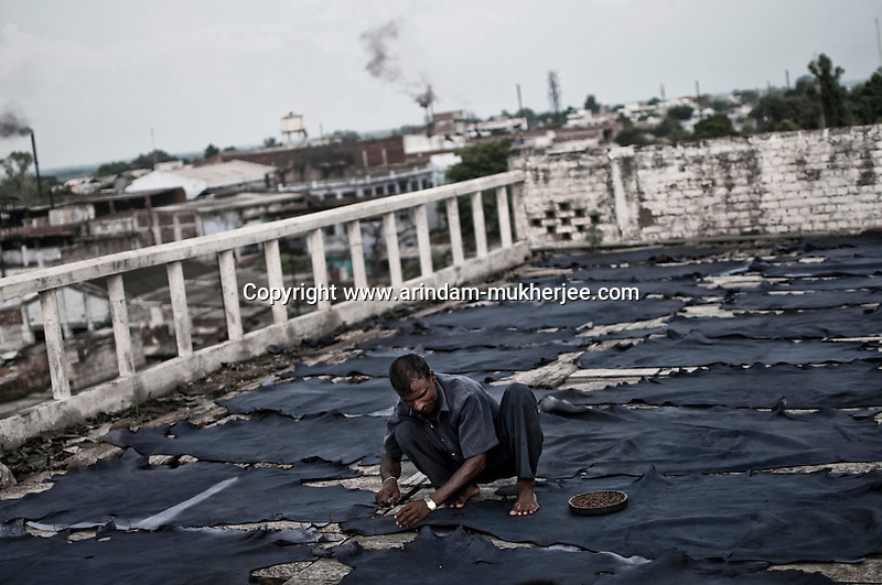 A daily wage labour  bare-handedly stretching and pinning the leather on the roof of a tannery, in Jajmau area, Kanpur. Exposure to the harmful chemicals used in the tannery causes skin diseases, respiratory diseases, gastro-intestinal ailments etc. Researches have shown presence of elevated amount of chromium in the blood and urine of the workers. Kanpur, Uttar Pradesh, India. Arindam Mukherjee
