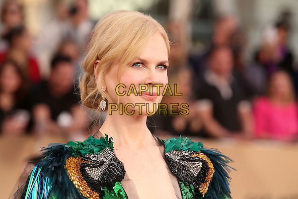29 January 2017 - Los Angeles, California - Nicole Kidman. 23rd Annual Screen Actors Guild Awards held at The Shrine Expo Hall. <br /> CAP/ADM/FS<br /> &copy;FS/ADM/Capital Pictures