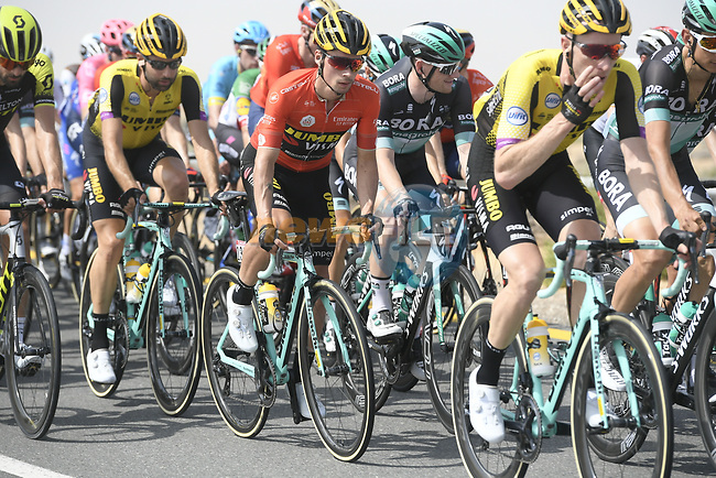 The peloton including race leader Red Jersey Primoz Roglic (SLO) Team Jumbo-Visma during Stage 4 of the 2019 UAE Tour, running 197km form The Pointe Palm Jumeirah to Hatta Dam, Dubai, United Arab Emirates. 26th February 2019.<br /> Picture: LaPresse/Fabio Ferrari | Cyclefile<br /> <br /> <br /> All photos usage must carry mandatory copyright credit (© Cyclefile | LaPresse/Fabio Ferrari)