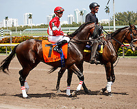 Fort Larned with jockey Julien Leparoux on post parade for the Skip Away Stakes (G3). Gulfstream Park Hallandale Beach Florida. 03-31-2012. Arron Haggart / Eclipse Sportswire
