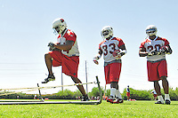 Jun 9, 2008; Tempe, AZ, USA; Arizona Cardinals fullback (44) Dionte Johnson running back (33) Steve Baylark and running back (30) Chris  Vincent run drills during mini camp at the Cardinals practice facility. Mandatory Credit: Mark J. Rebilas-