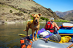 River rafting trip on the Lower Salmon River, central Idaho