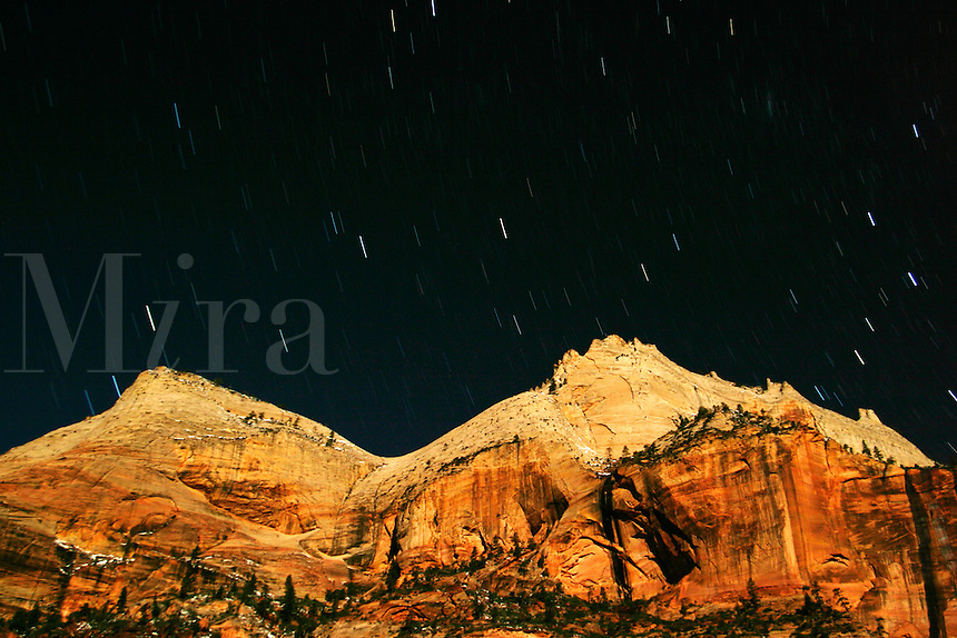 Star trails above canyon Walls lit by moon, Zion National Park, Washington County, U