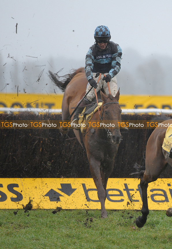 Wishfull Thinking ridden by Richard Johnson gets up to win the Betfair Super Saturday Chase (Registered As The Game Spirit Chase) Grade 2 Cl - Horse Racing at Newbury Racecourse, Newbury, Berkshire - 09/02/2013 - MANDATORY CREDIT: Martin Dalton/TGSPHOTO - Self billing applies where appropriate - 0845 094 6026 - contact@tgsphoto.co.uk - NO UNPAID USE.
