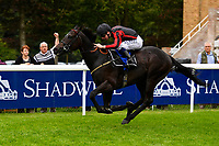 Winner of Peter Symonds Catering Handicap (Class 5),  Field of Vision ridden by Oisin Murphy and trained by Joeseph Tuite during Afternoon Racing at Salisbury Racecourse on 7th August 2017