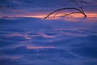 Wind blown snow at sunset, Arctic, Alaska