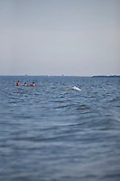 SEA_LOCATION_80269