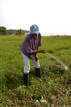 A Garifuna man clears a field with a machet in Barranco village in southern Belize.