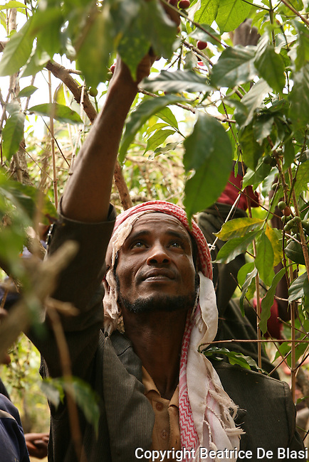 Fair Trade Workers across the world