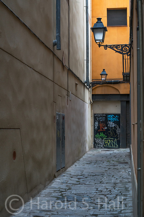 I had to take this photo through an iron gate.  I liked the simple narrow street, as so many are in Barcelona, with the colorful wall at the end.  Apparently the iron gate was not enough to keep out the graffiti artists.  Naranja means orange in Spanish.