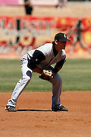 Conor Gillaspie   -  2009 San Jose Giants (California League) ..Photo by:  Bill Mitchell/Four Seam Images