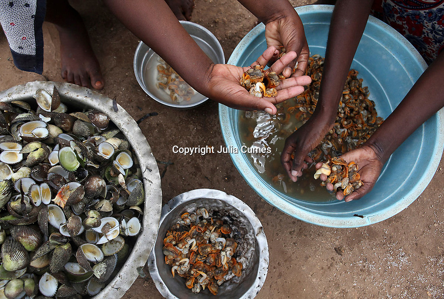 Ikiwa Abdulla  (hands at right) and her sister prepare the shellfish Abdulla gathered earlier in the day for their family dinner in Fumba, Zanzibar.  Abdulla is a participant in a shellfish program that hopes to teach women in Zanzibar how to cultivate shellfish. While women already harvest shellfish, the program will help replenish the already overfished stocks of oysters and clams and promote economic opportunities for women in rural villages in Zanzibar.