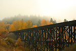 Washington, Newport, Cusick. A wood timber train trestle crosses a small gully and stream, as the sun burns through thick autumn fog.