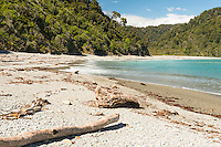 Smoothwater Bay near Jackson Bay, South Westland, West Coast, World Heritage Area, South Island, New Zealand