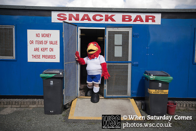 Vauxhall Motors FC 0 Solihull Moors 2, 26/04/2014. Rivacre Park, Conference North. The home team's mascot exits the snack bar before Vauxhall Motors play Solihull Moors at Rivacre Park in the final Conference North fixture of the season. It was to be the last match for the Ellesmere Port-based home club, named after the giant car factory in the town, who have resigned from the professional pyramid system to return to local amateur football due to spiralling costs and low attendances. Their final match resulted in a 2-0 home defeat, watched by a crowd of only 215. Photo by Colin McPherson.