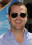 Chris O'Donnell at the Warner Bros. Pictures World Premiere of Cats & Dogs Revenge of Kitty Galore held at The Grauman's Chinese Theatre in Hollywood, California on July 25,2010                                                                               © 2010 Debbie VanStory / Hollywood Press Agency
