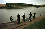 Salmon netters at Paxton House, the last fishery on the Scottish side of the river Tweed in Berwickshire, haul their net ashore at dusk on a late summer evening as the season, which ends on 13th September, draws to a close. There are only three river fisheries remaining along the whole length of the Tweed. The once-thriving Scottish salmon netting industry fell into decline in the 1970s and 1980s when the numbers of fish caught reduced due to environmental and economic reasons. By 2007, only a handful of men still caught wild salmon and sea trout using traditional methods, mainly for export to the Continent.