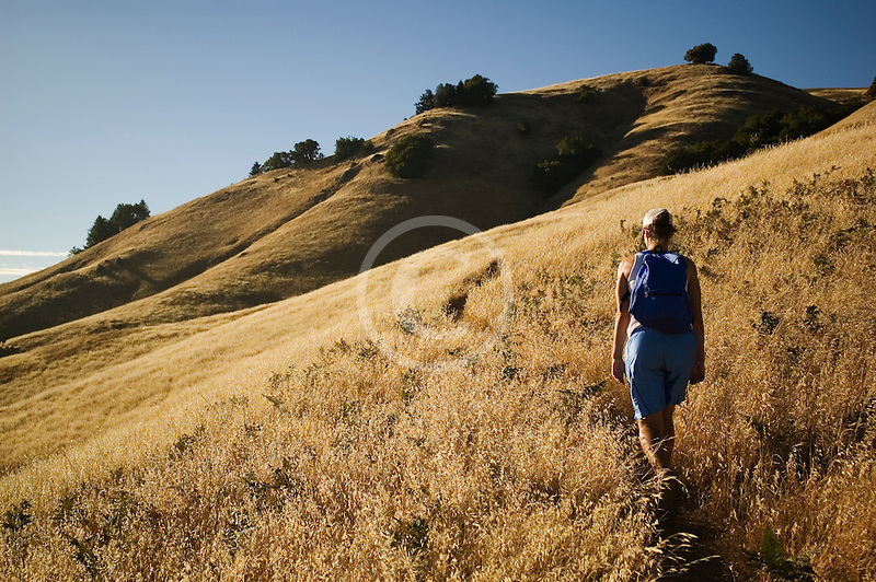 California, Marin County, Mount Tamalpais State Park, hiker, Coastal Trail