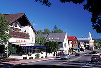 Lake Placid, New York, NY, Adirondacks, Shops along Main Street in downtown Lake Placid.