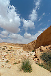 Israel, Wadi Rahash in the Arava