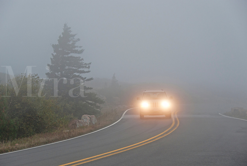 Car driving in heavy fog, Maine, USA