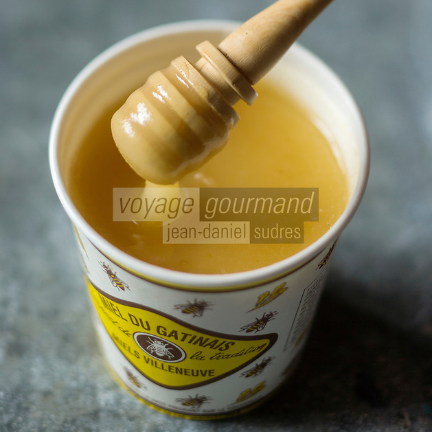 Europe/France/Ile de France:  Miel du Gâtinais - Stylisme : Valérie LHOMME // Europe/France/Ile de France:  Honey from Gâtinais