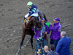 November 1, 2019 : Storm the Court, ridden by Flavien Prat, wins the TVG Breeders' Cup Juvenile on Breeders' Cup Championship Friday at Santa Anita Park in Arcadia, California on November 1, 2019. John Voorhees/Eclipse Sportswire/Breeders' Cup/CSM