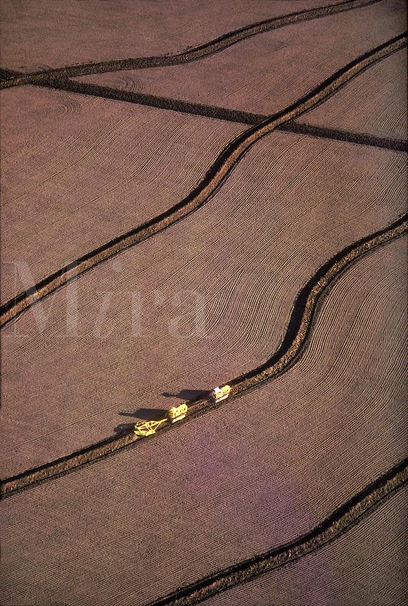 Contour Plowing, Lake Berryessa, California