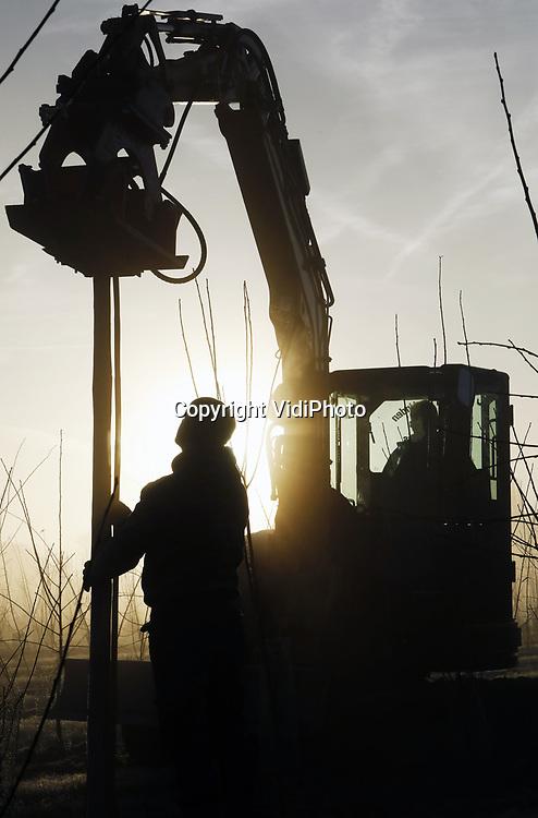Foto: VidiPhoto<br /> <br /> VALBURG &ndash; Tweeduizend houten palen gaan er donderdag machinaal de grond in, daarna volgen er nog 20.000 bamboestokken voor de al 10.000 net geplante pruimenbomen in het Betuwse Valburg. De al grootste pruimenteler van ons land, Betuwse Fruitkwekerij uit Slijk-Ewijk, vergroot aan de rand van het dorp Valburg zijn pruimenareaal met nog eens 4 ha. Daarmee komt het totaal aan pruimen bij de megateler op 34 ha. De boompjes zijn door de fruitteler zelf opgekweekt omdat boomkwekers onvoldoende pruimenbomen van de benodigde rassen kunnen leveren. Om machinaal planten (gps) van de bomen mogelijk te maken worden eerst de bomen neergezet en pas later de ondersteunende palen en bamboestokken neergezet. De komende weken gaan er op andere plekken in de Betuwe, nog eens 25.000 pruimenbomen de grond in. Doel van de eigenaren Frederik en Marinus Bunt is om het pruimenseizoen te verlengen en zo de consumptie van pruimen een flinke boost te geven.