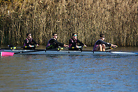 Crew: 101   Op 4+ BAND-2   Abingdon School Boat Club   Abingdon School B<br /> <br /> Wallingford Head 2017<br /> <br /> To purchase this photo, or to see pricing information for Prints and Downloads, click the blue 'Add to Cart' button at the top-right of the page.