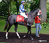 Erase The Deficit before The Small Wonder on Owners Day at Delaware Park on 9/13/14