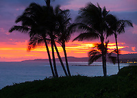 Palm trees silhouetted at sunset on Kauai's south shore in Poipu.  A blazing purple sunset illuminates the sky.  A blazing purple sunset illuminates the sky.