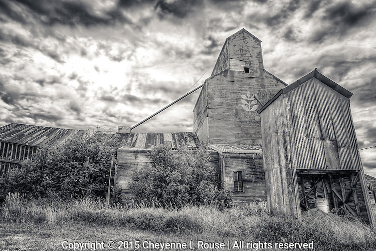 Red Grain Elevator - Montana (Black & White)