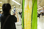 A woman takes a picture of a column displaying a giant corn in the Tokyo Metro passageway in Shinjuku on September 1, 2015, Tokyo, Japan. The Central Union of Agricultural Co-operatives (JA-ZENCHU) is promoting Japanese vegetables with the vegetable columns and a massive 80 meter ''Wall Farmer's Market'' information poster until September 6th. (Photo by Rodrigo Reyes Marin/AFLO)