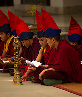 Buddhist monks chanting prayers during the Losar New Year ceremony at a monastery in the Himalayan foothills of Sikkim, India