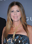 Rita Wilson at The LACMA 2012 Art + Film Gala held at LACMA in Los Angeles, California on October 27,2012                                                                   Copyright 2012  DVS / Hollywood Press Agency