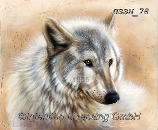 Sandi, REALISTIC ANIMALS, REALISTISCHE TIERE, ANIMALES REALISTICOS, paintings+++++,USSN78,#a#, EVERYDAY ,wolf,wolves ,wolf,wolves ,puzzles