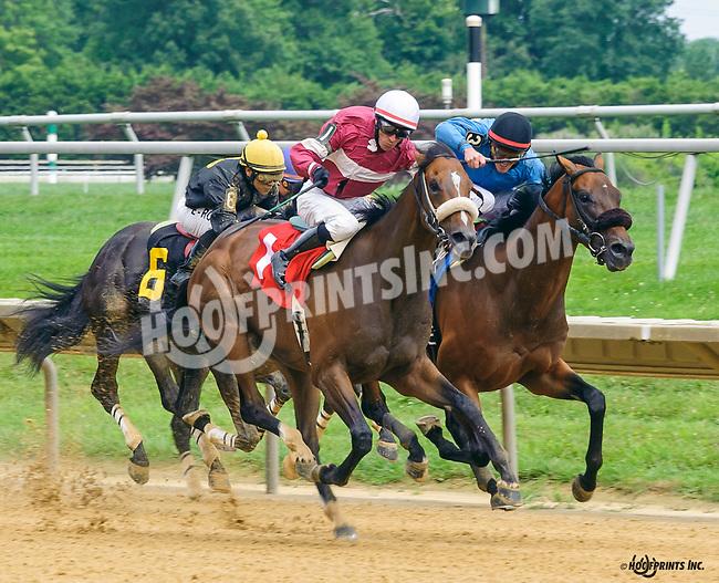 Summer Soldier winning at Delaware Park on 7/30/16
